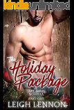The Holiday Package (A Jake Davis Novella Book 1)