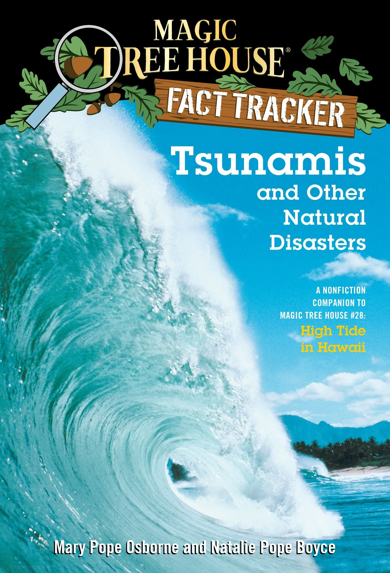 Tsunamis and Other Natural Disasters: A Nonfiction Companion to Magic Tree House #28: High Tide in Hawaii ebook