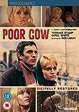 Poor Cow [DVD] [1967]