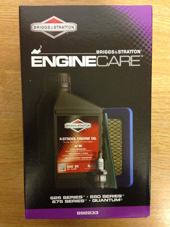 992202 Briggs /& Stratton Quantum Engine Service Kit