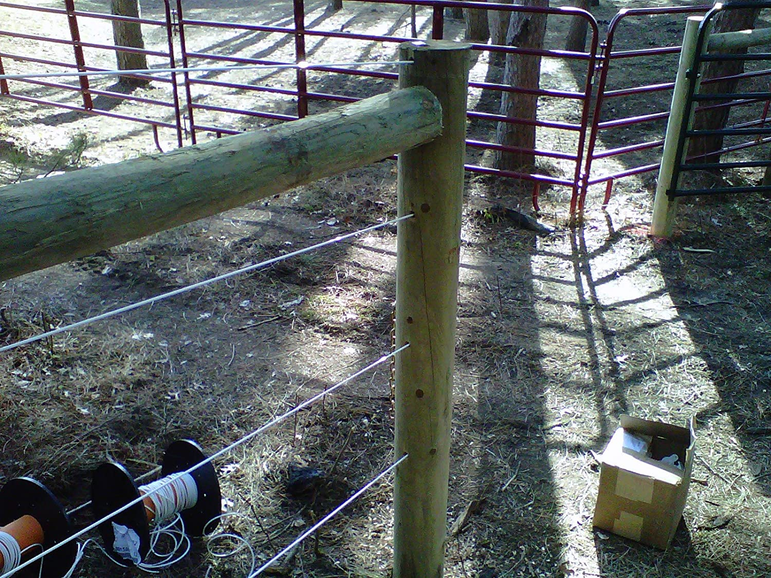 Bayco Finish Line Durable Horse Fence 2000 Foot Roll: Amazon.ca ...