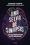 Una selva de sinapsis: Lo que escondes en tu cerebro