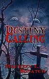 Destiny Calling (The Enchantlings Book 1)