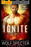 Ignite: M/M Gay Shifter Mpreg Romance (Dragon's Destiny: Fated Mates Book 3)
