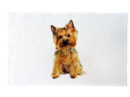 Yorkshire Terrier tamaño grande de perro paño de cocina de algodón