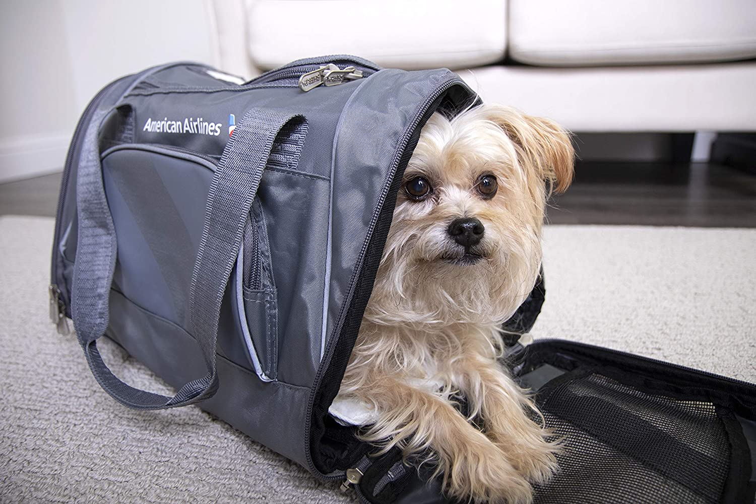 Amazon.com   Sherpa American Airlines Duffel Airline Approved Pet Carrier e321d800ebfd4