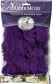 25124 SuperMoss Reindeer Moss Preserved Purple Renewed 2oz