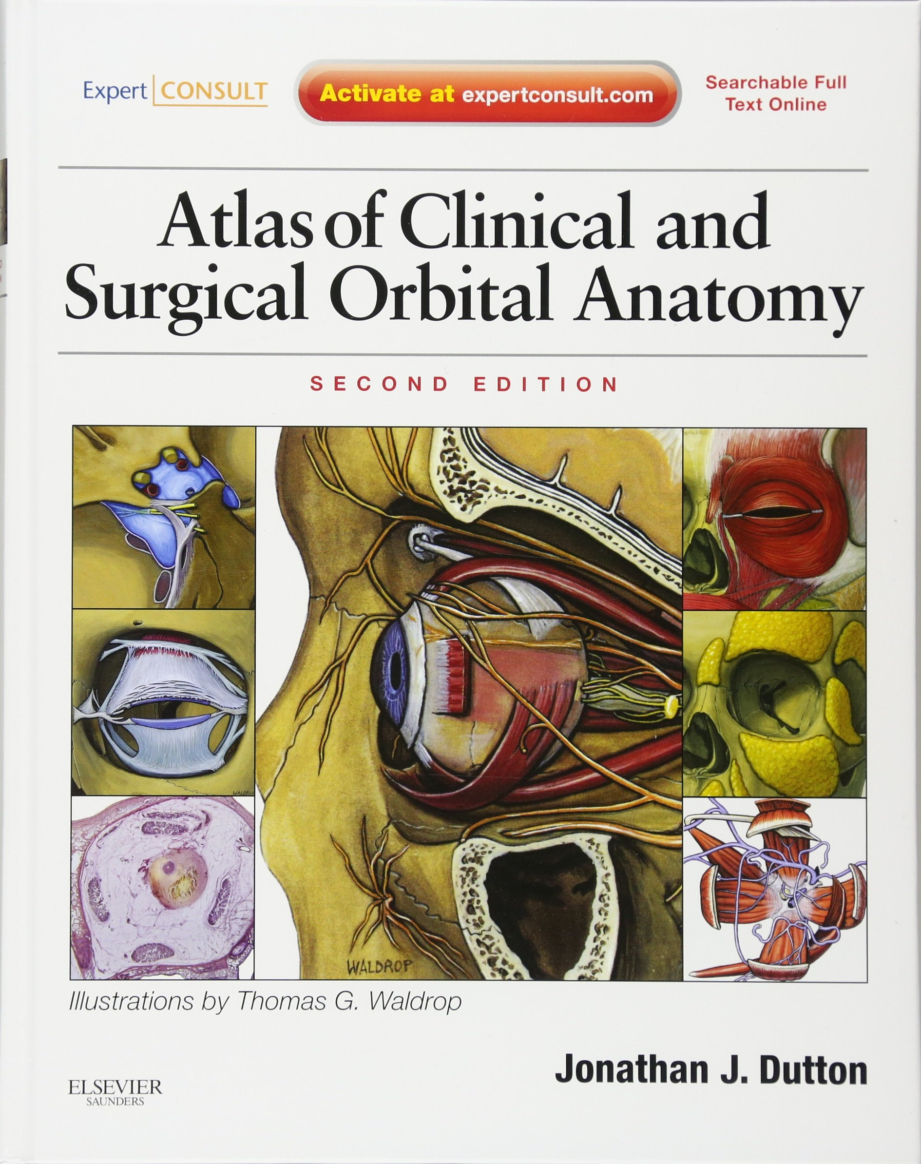 Atlas Of Clinical And Surgical Orbital Anatomy Expert Consult