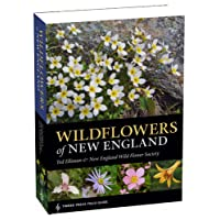 Wildflowers of New England: Timber Press Field Guide
