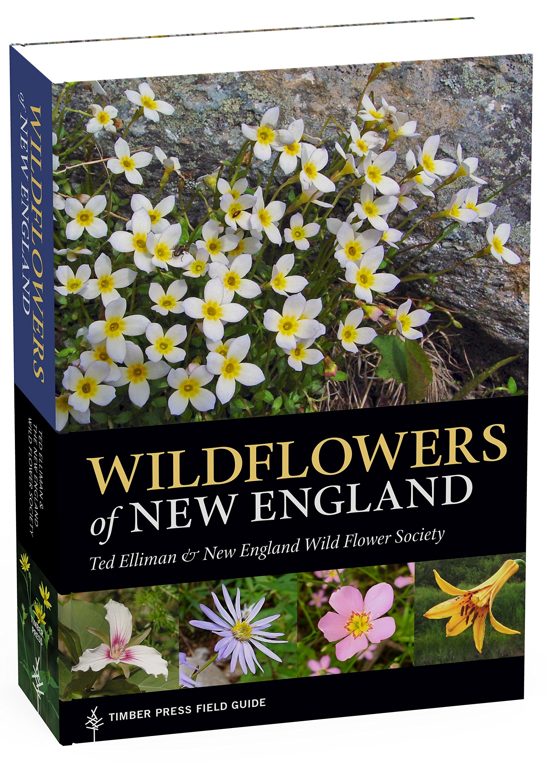 Wildflowers Of New England A Timber Press Field Guide Ted Elliman