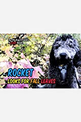 Rocket Looks for Fall Leaves: Hiking in the fall Kindle Edition