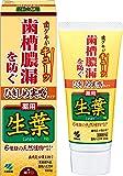 ひきしめ生葉(しょうよう) 歯槽膿漏を防ぐ 薬用ハミガキ ハーブミント味 100g