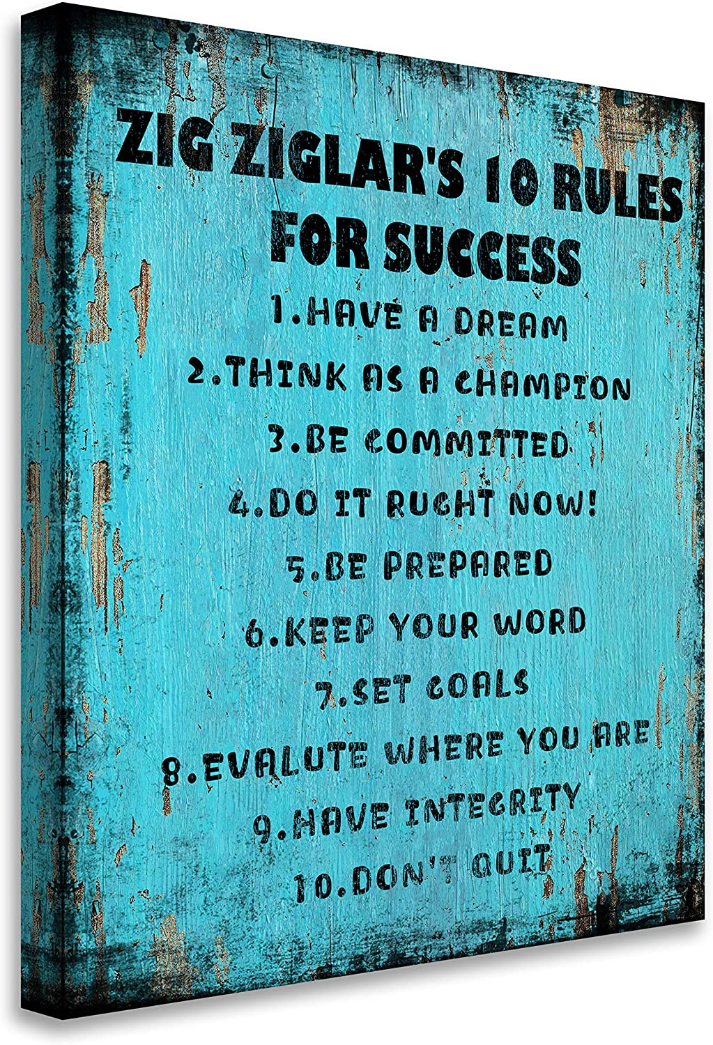 Blueyearn Zig Ziglar's 10 Rules for Success Inspirational Wall Art Motivational Poster Quotes Office Rustic Wall Decor for Living Room Bedroom Bathroom,11x14in