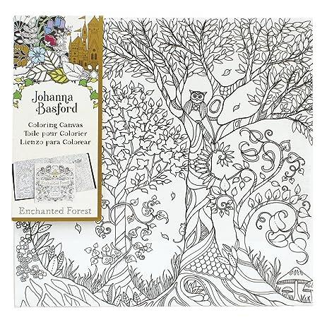 Amazon.com: Johanna Basford Enchanted Forest Coloring Canvas - Owl ...