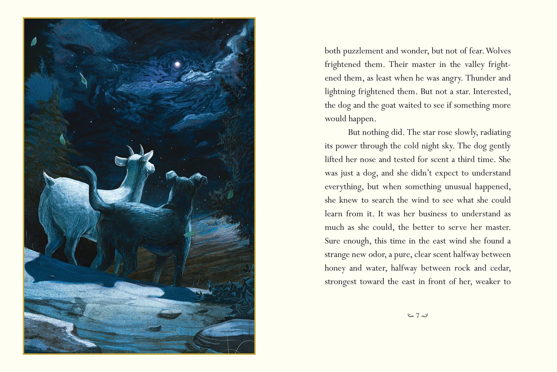 Amazon.com: Certain Poor Shepherds: A Christmas Tale (9780763670627 ...