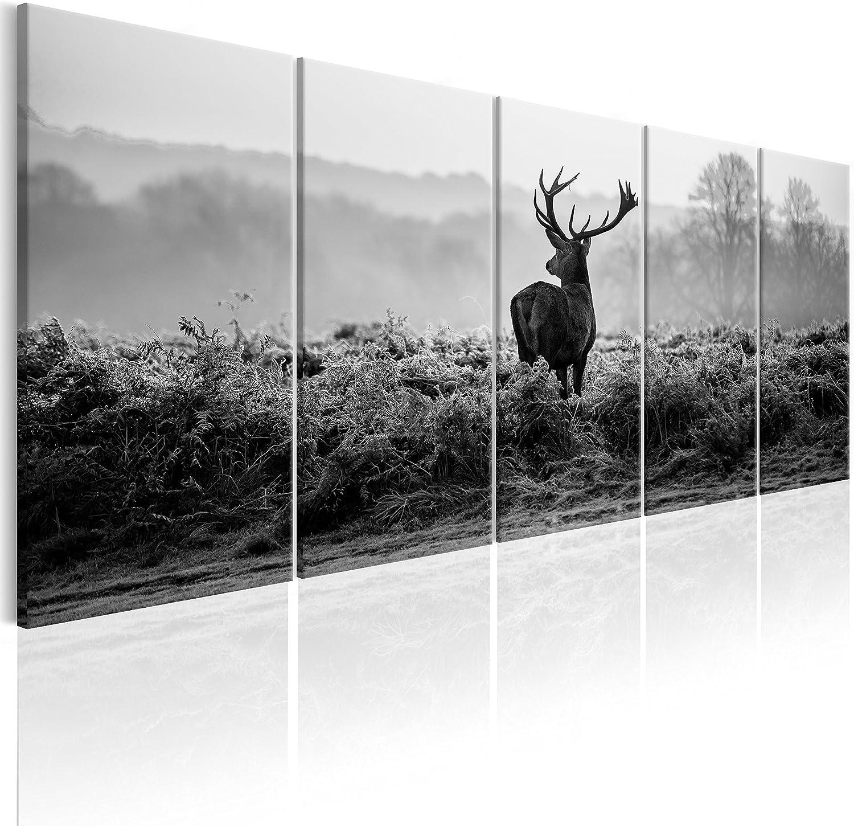 murando - Cuadro en Lienzo Ciervo 225x90 cm Impresión de 5 Piezas Material Tejido no Tejido Impresión Artística Imagen Gráfica Decoracion de Pared Naturaleza Animale Paisaje g-B-0047-b-o