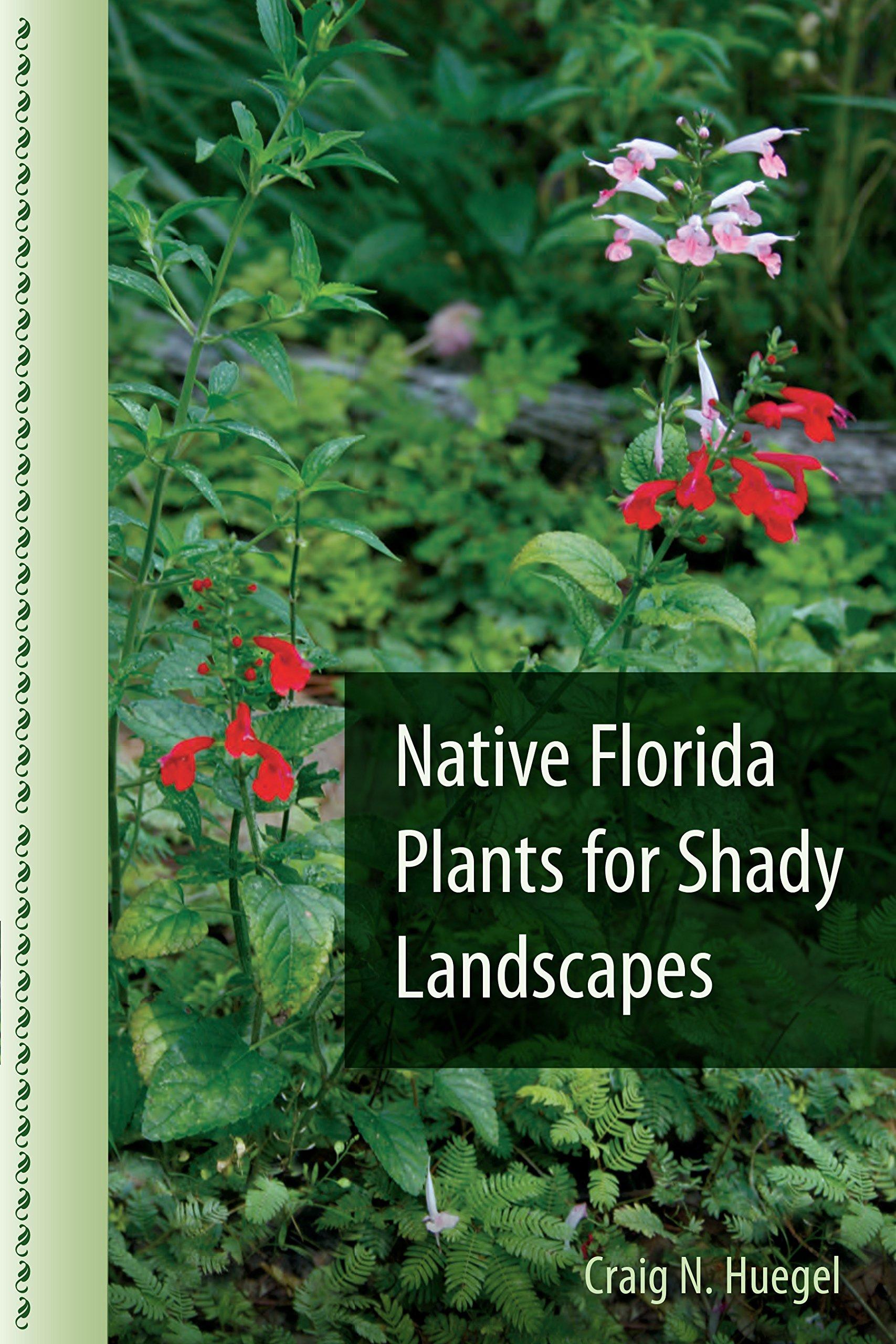 Native Florida Plants For Shady Landscapes Craig N Huegel