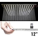 Clarita Home Square Stainless Steel Rainfall Shower Head, Large, 12-Inch, Chrome
