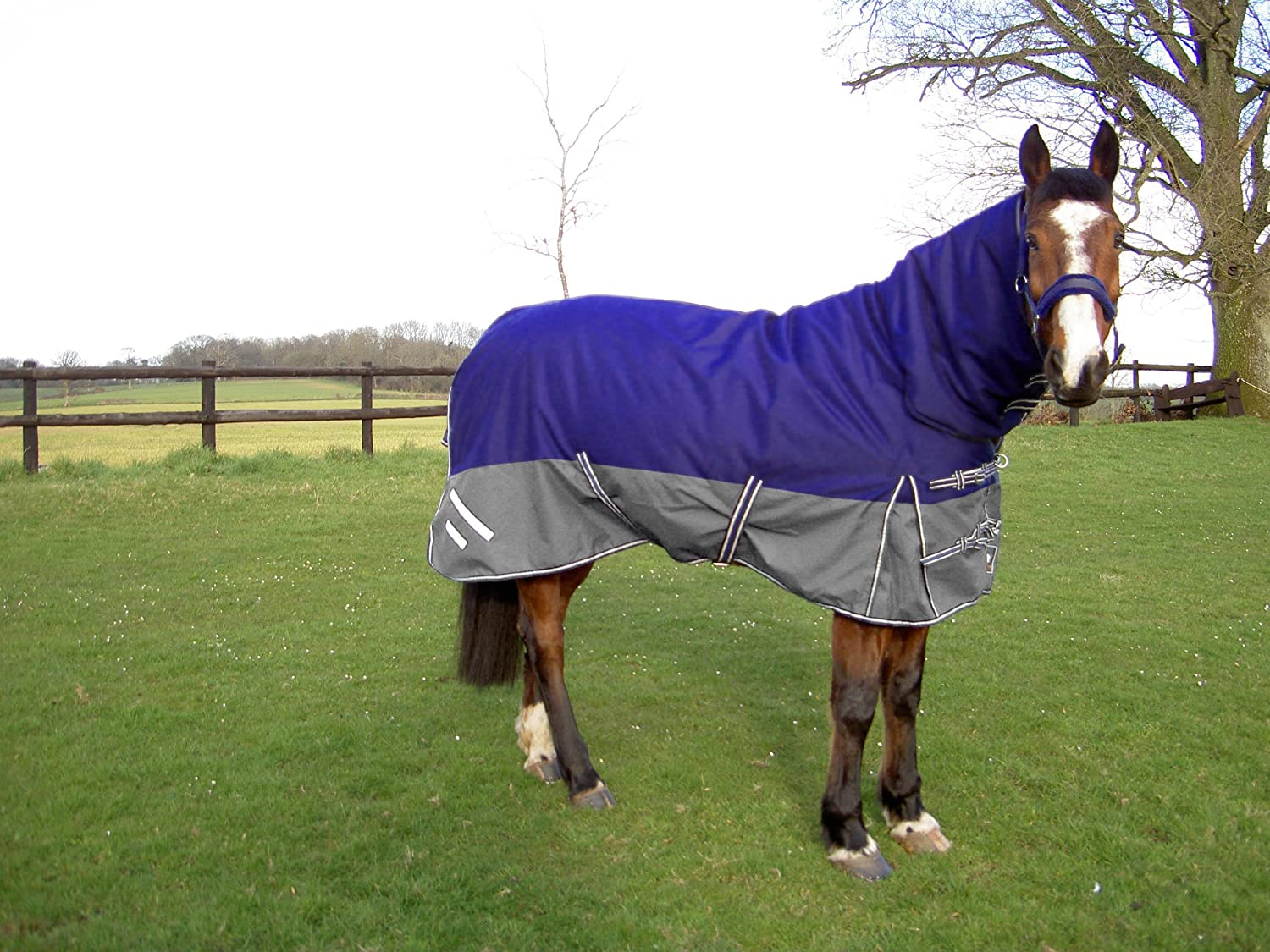GEE TAC 420G*1600D ULTIMATE TURNOUT COMBO HORSE RUG 6.3 ALL SIZES,  EQUESTRIAN: Amazon.co.uk: Sports U0026 Outdoors