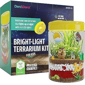 Dan&Darci Kit de Terrario de Luz LED en Tapa | Contruya su ...