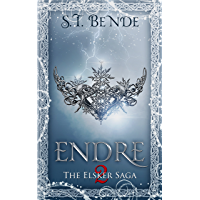 Endre (Elsker Saga Book 2) (English Edition)