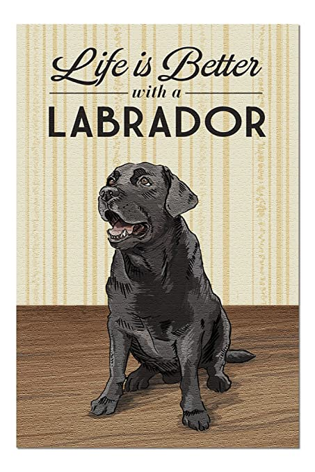 Three Labrador Jigsaw Puzzles 1000 Pieces for Adults