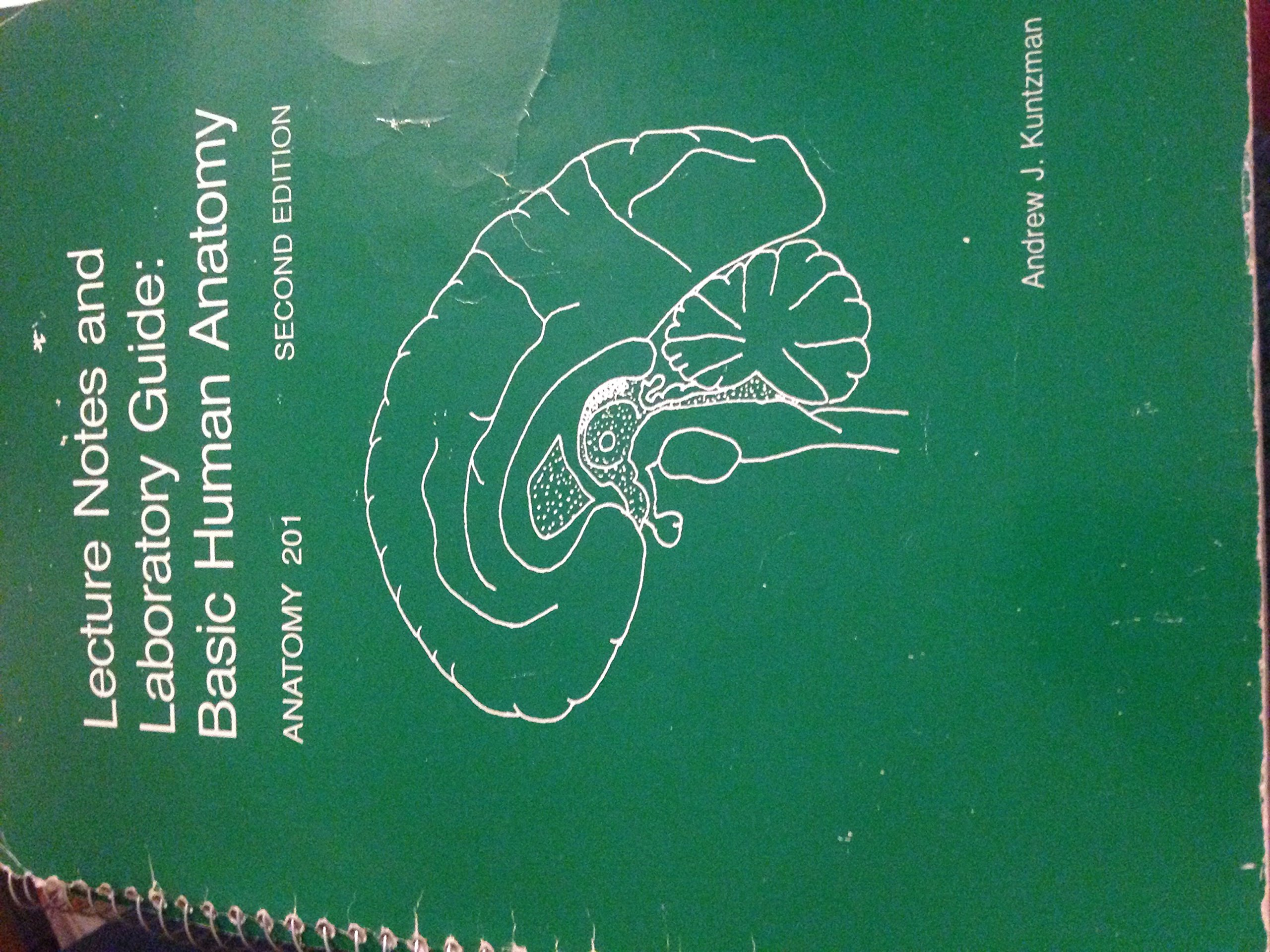Lecture Notes And Laboratory Guide Basic Human Anatomy Anatomy 201