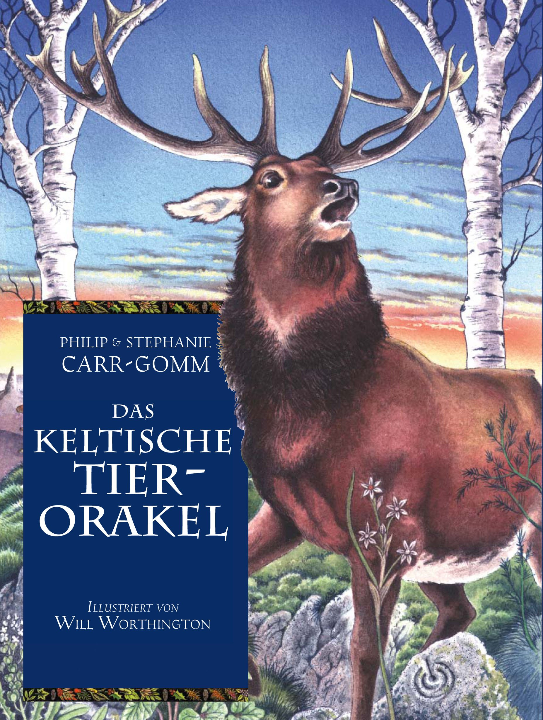 Das keltische Tierorakel: Karten und Buch