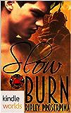 Dallas Fire & Rescue: Slow Burn (Kindle Worlds Novella)