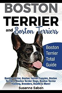Yorkshire Terrier And Yorkshire Terriers: Yorkshire Terrier