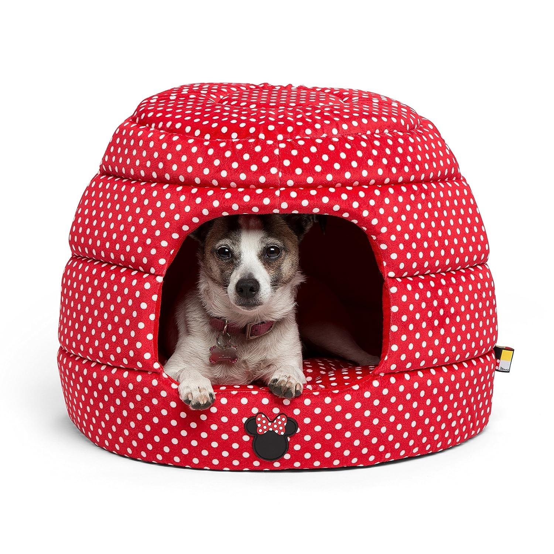 Amazon Beds Beds & Furniture Pet Supplies