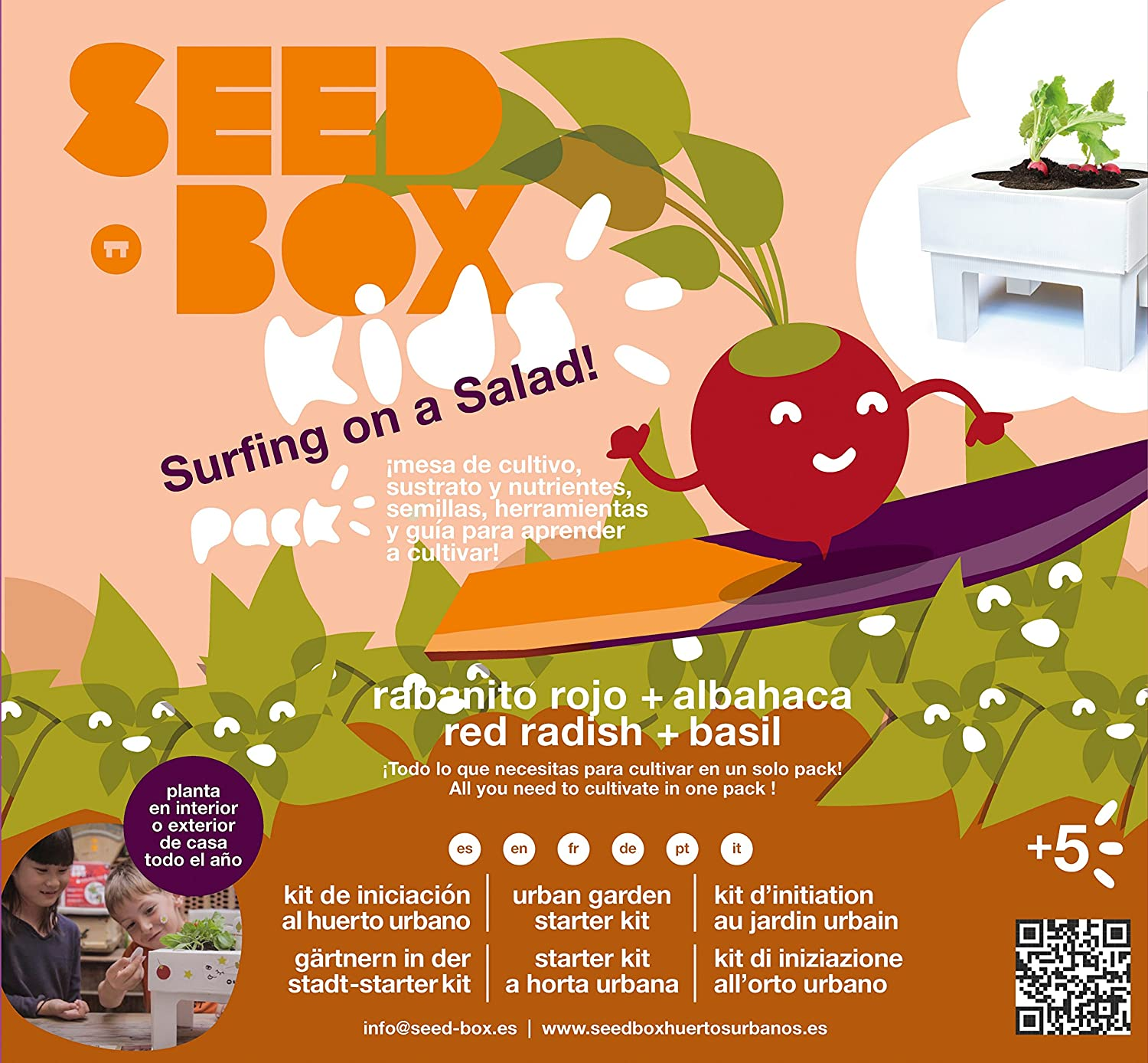 Seedbox Seed Box SBKSS - Salad, Verde, 19x6x19 cm: Amazon.es: Jardín