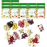 Freeze Dried Fruit: 15 Delicious Fruits Strawberry, Blueberry, Raspberry & More. 8oz 1/2 Pound, 12 Large Bags (0.67oz each) t
