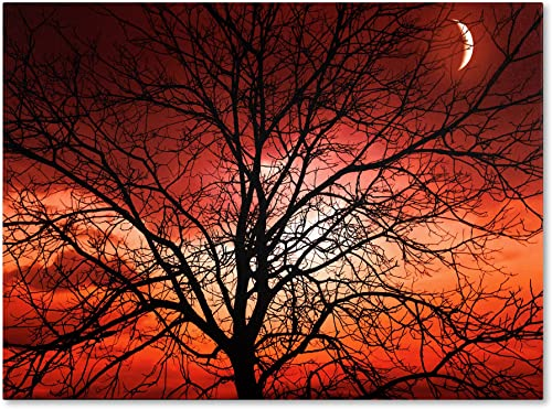 Big Bad Moon Artwork