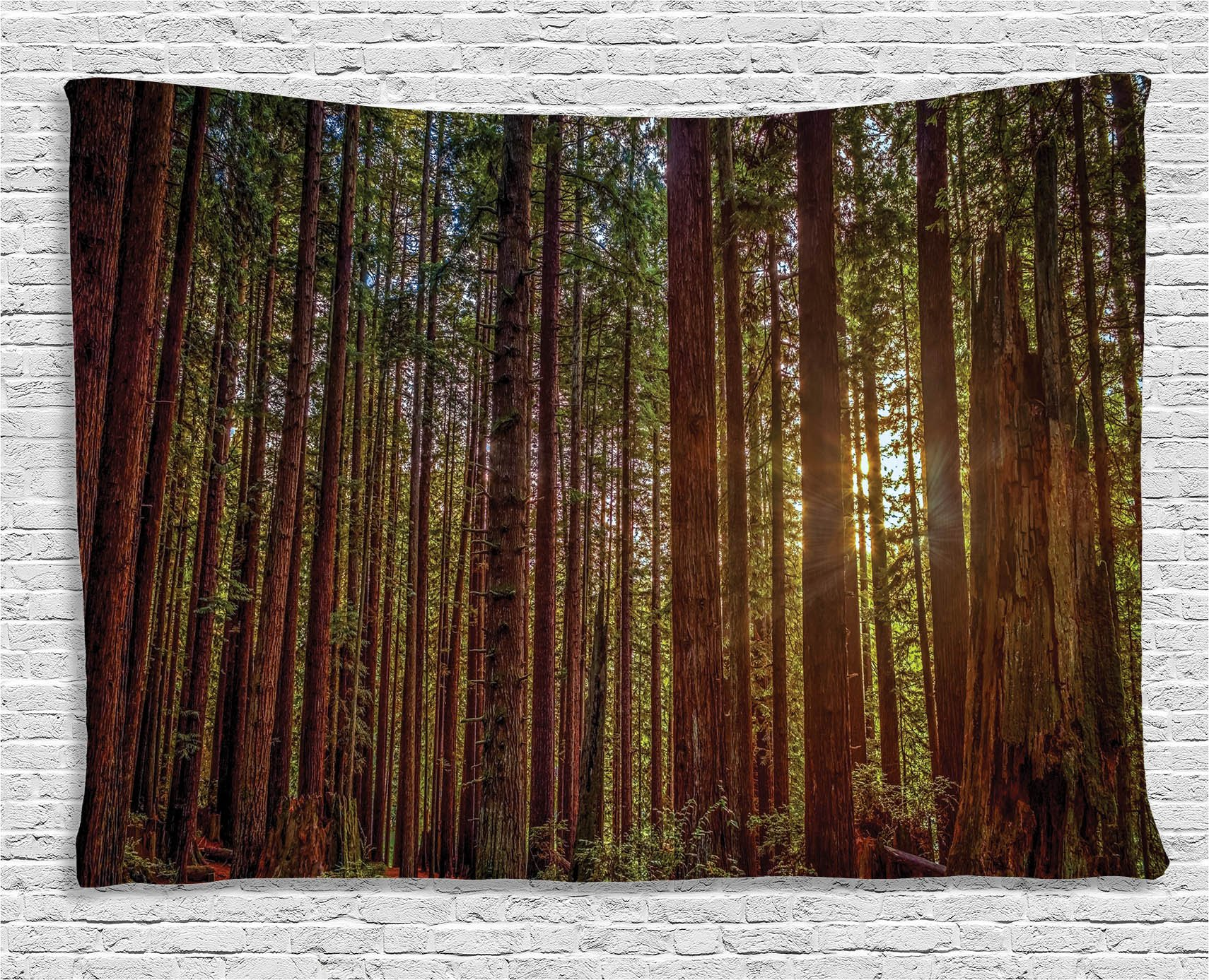 Ambesonne Nature Decor Tapestry Wall Hanging, Redwood Forest in California, Bedroom Living Room Dorm Decor, 80 W X 60 L inches, Green and Brown