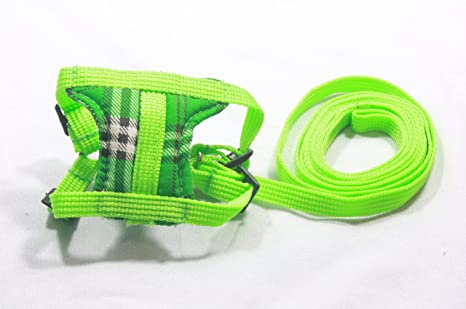 Cream Leashes lead set and Adjustable soft harness for guinea piglet rat hamster ferret prairie dog and small pets