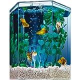 Tetra Aquarium Kit, 1 Gallon Hexagon Shaped Fish Tank, Includes LED Colour Changing Bubbling Effect