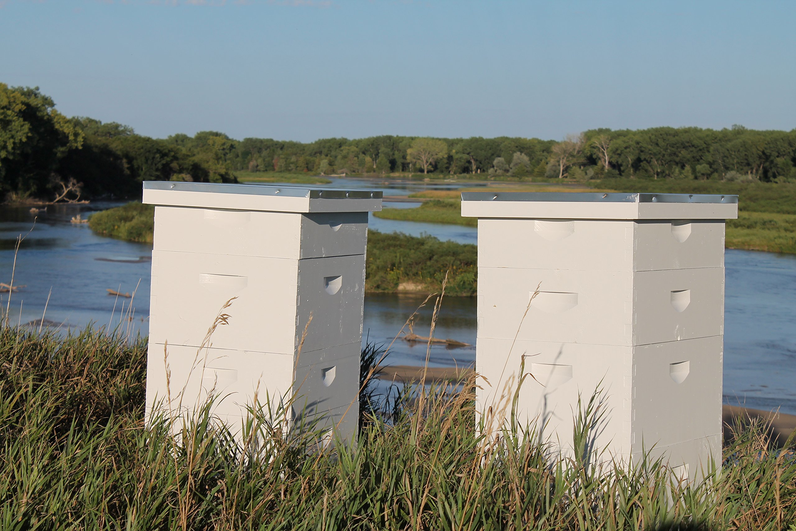 Raw Honey Pure Natural Nebraska Honey One 2lb Jar by Prairie River Honey Farm (Image #6)