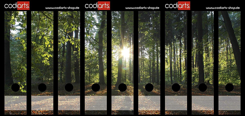 codiarts Set 9pezzi larghezza raccoglitori di etichette autoadesive (raccoglitori di Sticker) sole raggi, naturale, Sole nel bosco, Tramonto su radura della foresta codiarts.