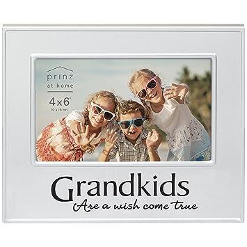 Amazon.com - Prinz Family Ties Grandkids Frame -