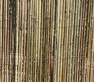 Bambú, escudo de privacidad valla 5 m x 1,5 m: Amazon.es: Jardín
