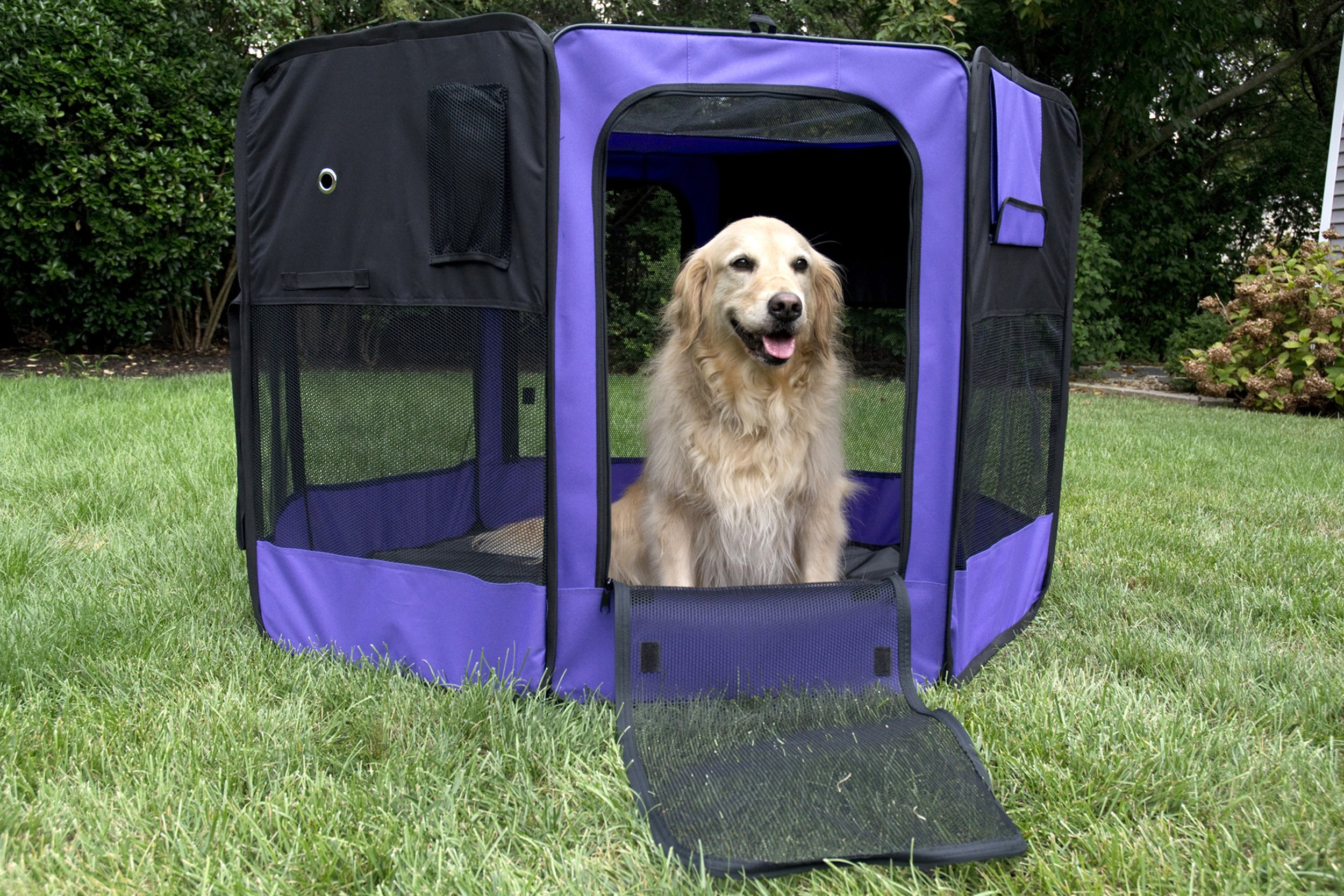 Iconic Pet Portable Pet Soft Play Pen, Purple, Small by Iconic Pet (Image #9)