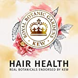 Herbal Essences Biorenew Passion Flower & Rice Milk Nourish Shampoo, 13.5 FL OZ