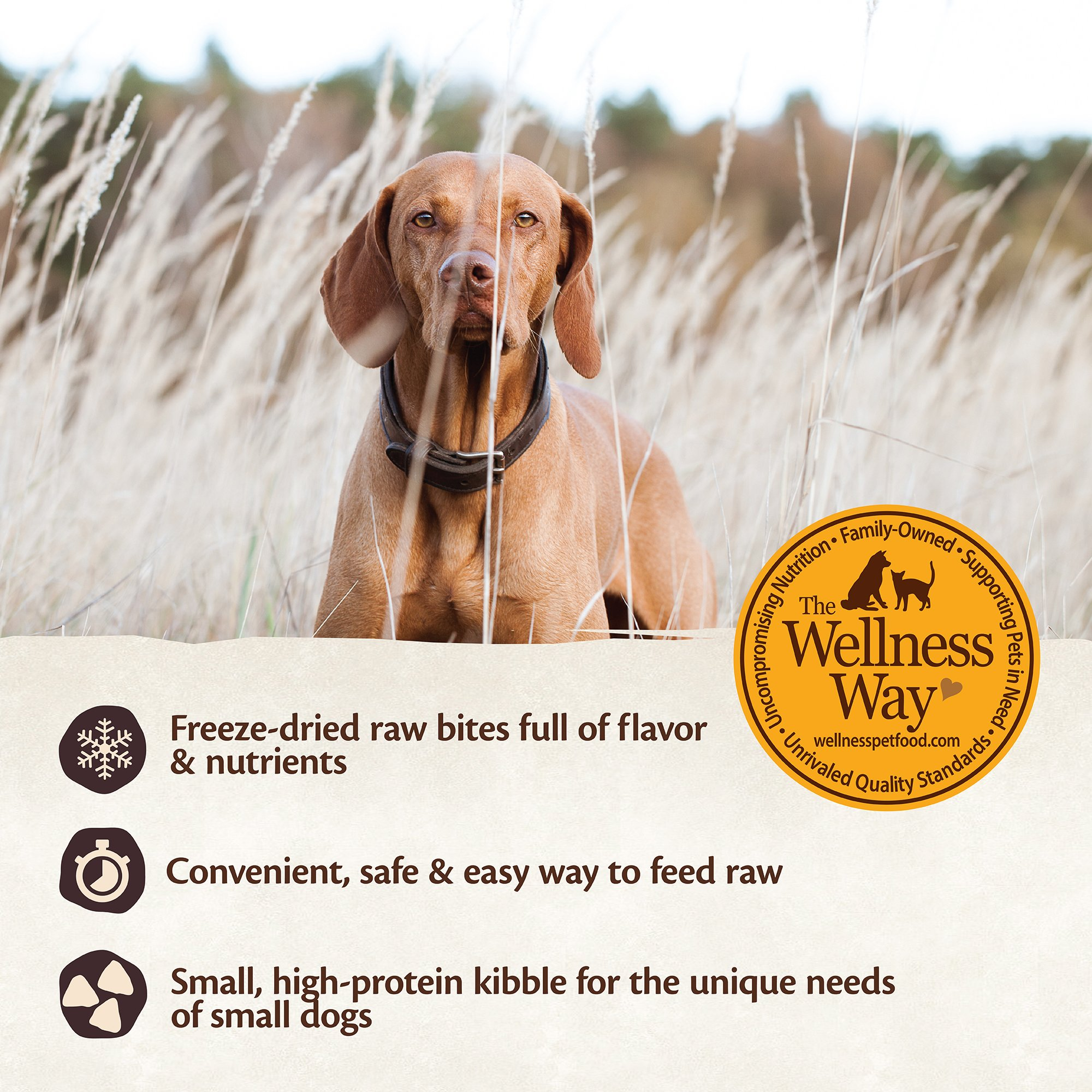 Wellness CORE RawRev Natural Grain Free Small Breed Dry Dog Food, Original Turkey & Chicken with Freeze Dried Turkey, 10-Pound Bag by Wellness Natural Pet Food (Image #6)