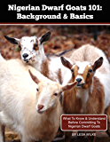 Nigerian Dwarf Goats 101: Background & Basics: What To Know & Understand Before Committing To Nigerian Dwarf Goats