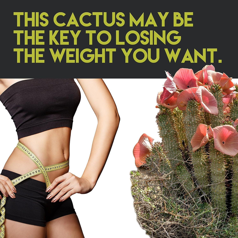 beneficiile protinexului pentru pierderea în greutate