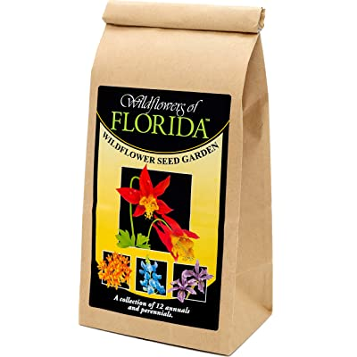 Florida Wildflower Seed Mix - A Beautiful Collection of Twelve annuals and perennials - Enjoy The Natural Beauty of Flowers in Your own Home Garden : Garden & Outdoor