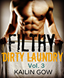 FILTHY DIRTY LAUNDRY (A Stepbrother Romance) Vol. 3
