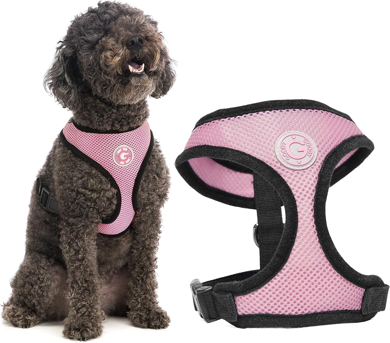 Junk Food Print Summer Dog Take Me Out Pink Dog Harness