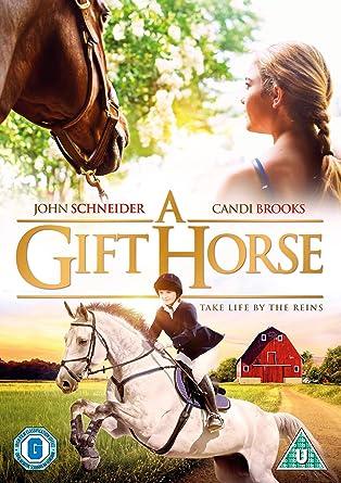 A gift horse dvd amazon tina davey john schneider a gift horse dvd negle Image collections